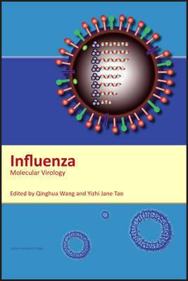 Influenza image