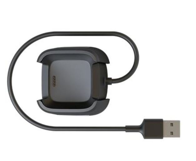 Fitbit Versa Charging Cable