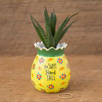 Natural Life: Critter Succulent - Pineapple