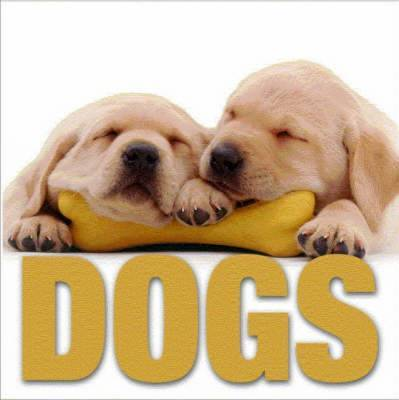 Dogs image