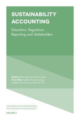 Sustainability Accounting image