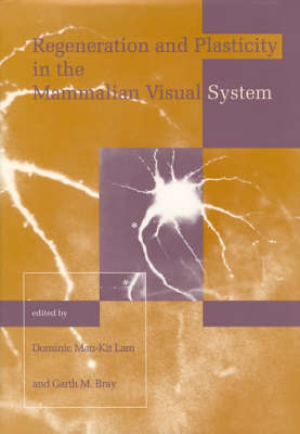 Retina Research Foundation Symposium Proceedings: Volume 4 image