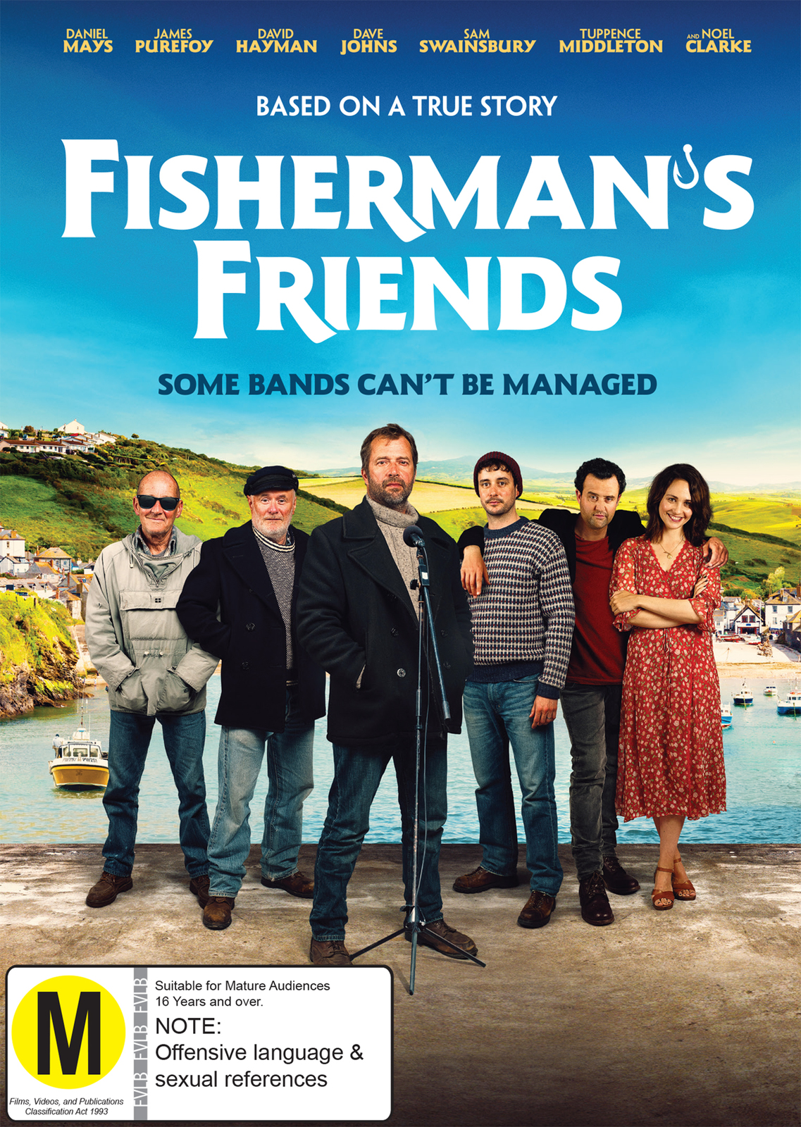 Fisherman's Friends on DVD image