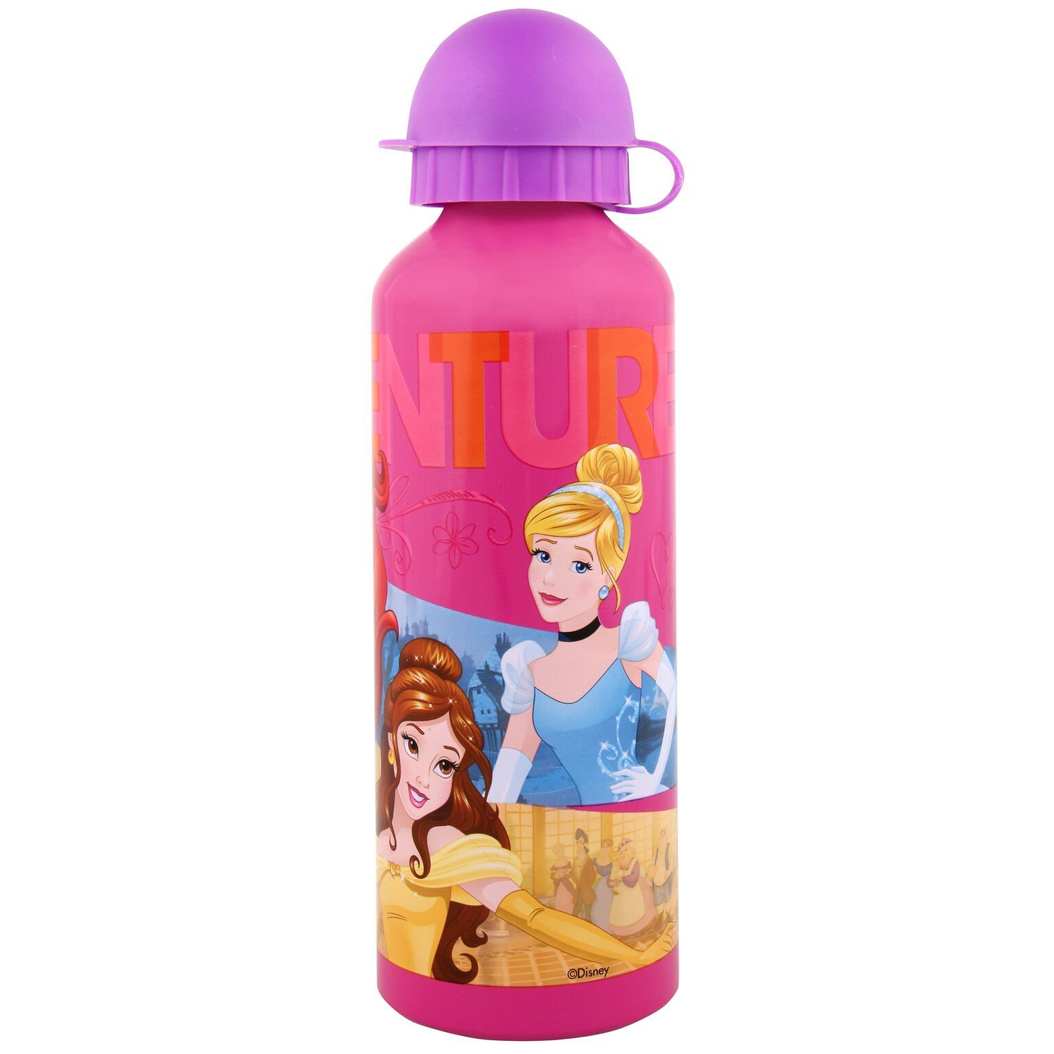 Disney Princess Aluminium Bottle (500ml) image