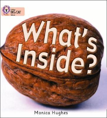 What's Inside? by Monica Hughes