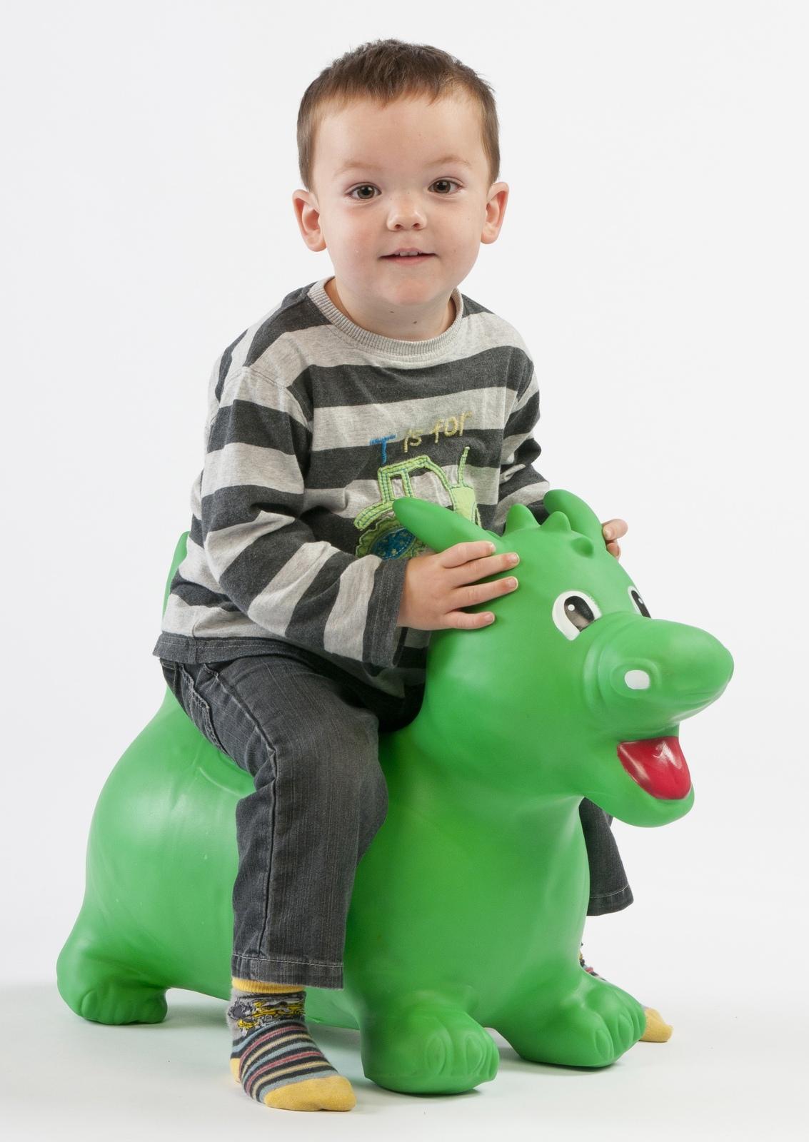 Happy Hopperz - Green Dino (Large) image