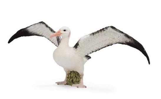 CollectA - Wandering Albatross
