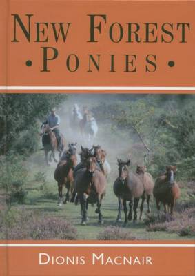 New Forest Ponies by Dionis Macnair