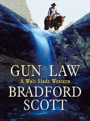 Gun Law by Bradford Scott