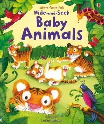 Hide and Seek Baby Animals by Fiona Watt