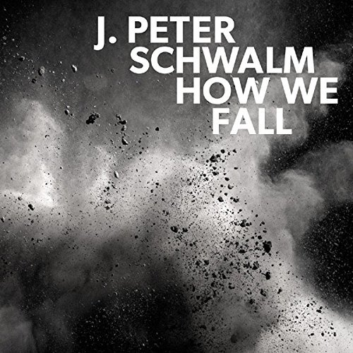 How We Fall by Schwalm