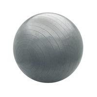 Bollinger 75cm Pro Body Ball (Ab Titanium)