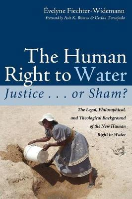 The Human Right to Water by Evelyne Fiechter-Widemann