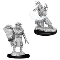 D&D Nolzurs Marvelous: Unpainted Miniatures - Male Human Druid