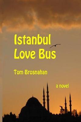 Istanbul Love Bus by Tom Brosnahan