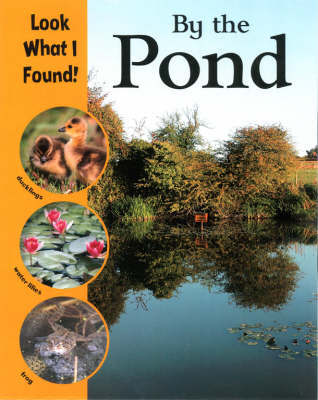 By the Pond by Paul Humphreys