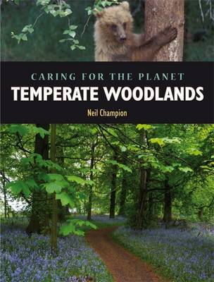 Temperate Woodland by Nigel Champion