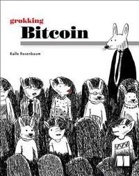 Grokking Bitcoin by Kalle Rosenbaum