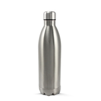 Insulated Stainless Steel Bottle 1L Gloss Stainless Steel