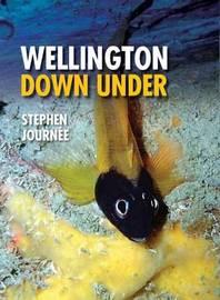Wellington Down Under by Stephen Journee