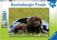 Ravensburger - Bébés Labrador Puzzle (300pc)