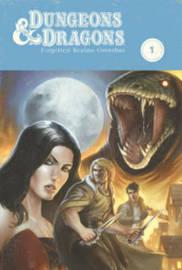 Dungeons & Dragons: Forgotten Realms Omnibus by Geno Salvatore