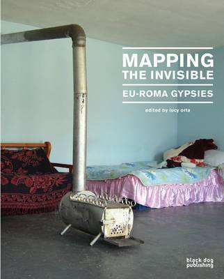 Mapping the Invisible image