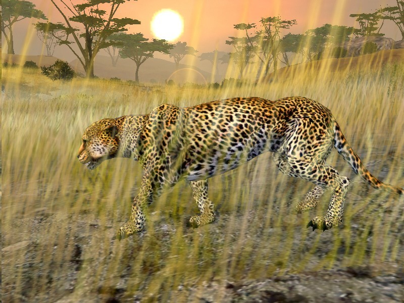 Cabela's African Safari for Xbox 360 image