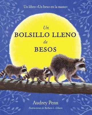 Un Bolsillo Lleno de Besos by Audrey Penn