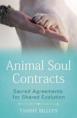 Animal Soul Contracts by Tammy Billups