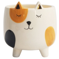 Planter Pets: Ginger Cat on Legs - (11cm)