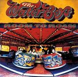 Room To Roam (LP) by The Waterboys