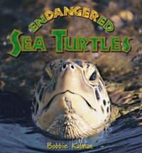 Endangered Sea Turtles by Bobbie Kalman image