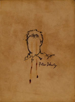 The Books of Albion by Peter Doherty image