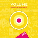 Volume: Making Music In Aotearoa (2000s) by Various