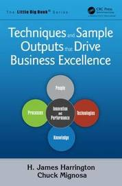 Techniques and Sample Outputs That Drive Business Excellence by H. James Harrington