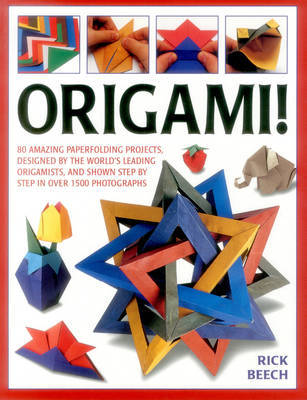 Origami! by Rick Beech