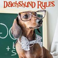 Dachshund Rules by Willow Creek Press image