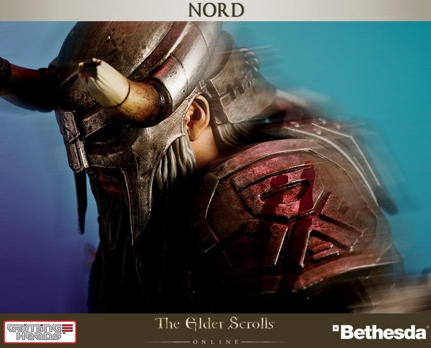 Elder Scrolls Online Nord Statue At Mighty Ape Nz
