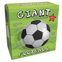 Giant Inflatable Football