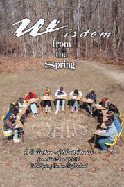 Wisdom from the Spring: A Collection of Short Storiesfrom the Class of 2010cold Spring Harbor High School by Joanna Bergida