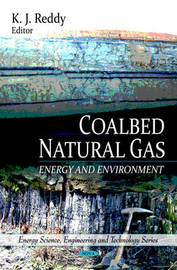 Coalbed Natural Gas image