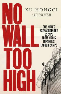 No Wall Too High by Xu Hongci image
