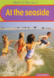 Seaside Big Book by Angela Royston image