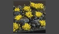 Gamer Grass Yellow Flowers (Wild)