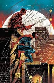 Marvel Knights: Marvel Knights By Joe Quesada Omnibus by Joe Quesada