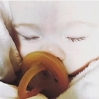 ecoPacifier: Natural Rubber Dummy - Rounded (6 mths +) image