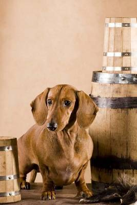 Dachsund Guarding the Beer, for the Love of Dogs by Unique Journal