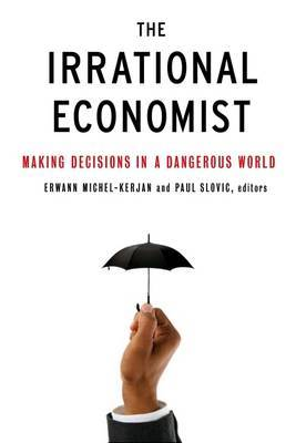 The Irrational Economist: Making Decisions in a Dangerous World by Erwann Michel-Kerjan image