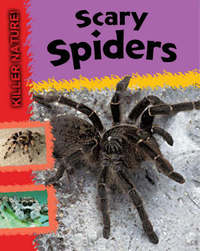 Scary Spiders by Lynn Huggins Cooper image